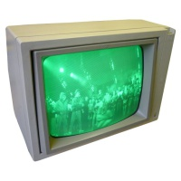 Apple Green Monitor A2M2010P Hire