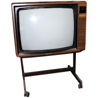 Grundig Super Color - Wood Effect TV Hire